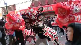 New York Lion Dance Hung Ching CHOY CHANG 2019 múa lân 舞狮