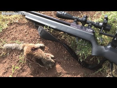 Hunting Ground Squirrel with a 2014 .25 cal Benjamin Marauder Air Rifle