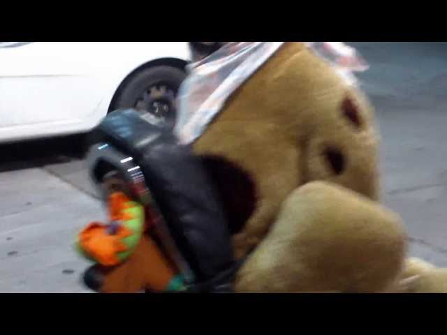 a guy has stuffed animals on his harley. scooby doo rides, nampa idaho phillips 66