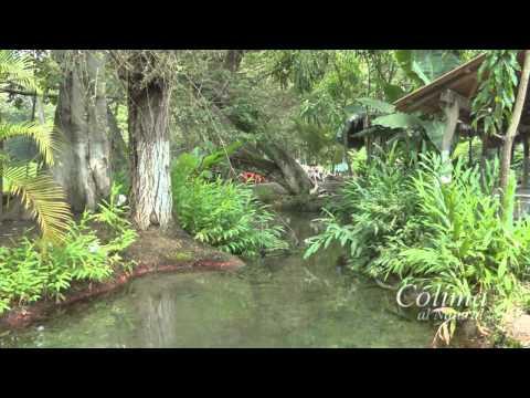 Colima al Natural - Ríos de Colima y Agua Fría (Parte 1)