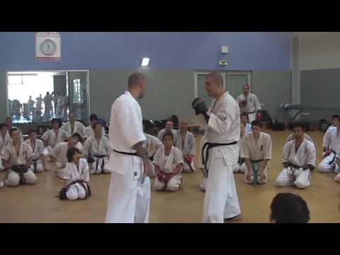 Sensei Artur Hovannisian - Kumite combination #1 Image 1