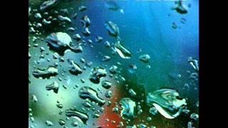 Watch Ocean Blue Cerulean video