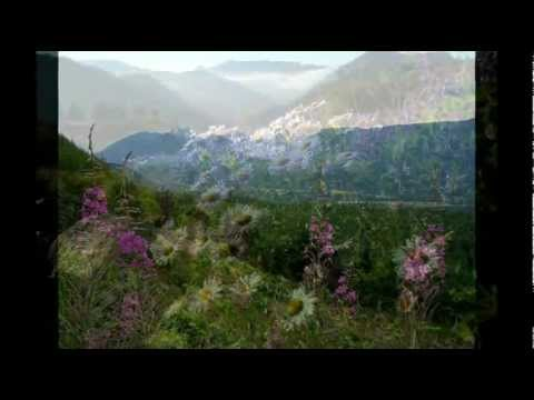 Beauty - Time Warp Explorer - Mountains, Highlands flowers & Nature