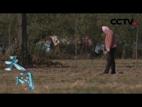 《天網》她有四個家:四任丈夫四個家  究竟哪個才是這個女人心靈的歸屬? | CCTV社會與法