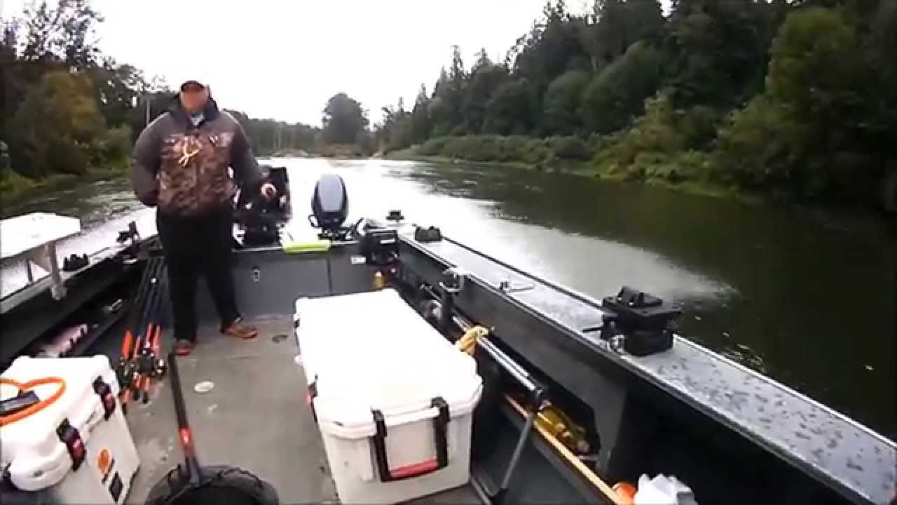 Catching on 2nd trip on snohomish river fishing focus for Snohomish river fishing