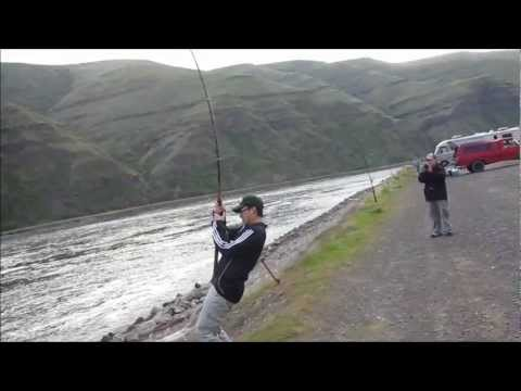 Sturgeon Fishing on the Snake River