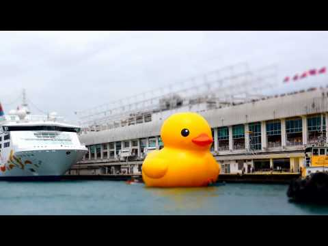 巨大������ �港��場 Rubber Duck Project 2013 Hong Kong Tour