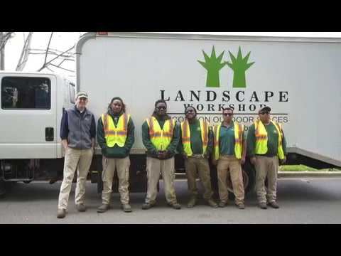 Landscape Workshop LLC | Southeast's Commercial Landscape Experts