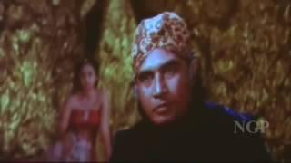 Lady Anaconda   Hollywood adventure Movie l Hindi Dubbed Movie l