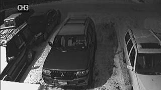 Raw: Parked Cars Shake as Earthquake Hits Alaska