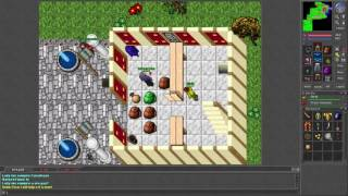 Tibia [7.21] Level 64 Mass-PK with UE in Thais, Venore and Ab'Dendriel