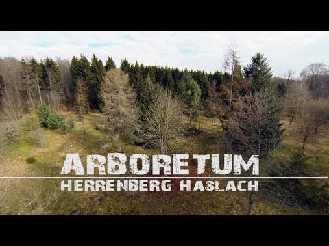 Arboretum Herrenberg-Haslach