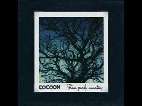 Cocoon - Hummingbird
