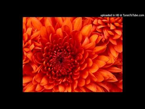 1.devra Tudi Killi (purvi) - Hit Bhojpuri Video Song Kalpana   Pyar Ke Rog Bhayil video