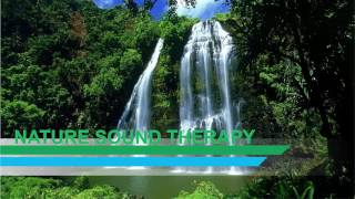 Download Lagu Music Terapi Stress Suara ALAM Perpaduan Suling Sunda FULL ( 8 Jam ) Relax, Refresh, Damai Gratis STAFABAND