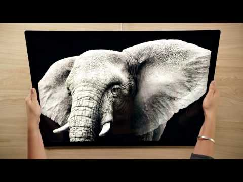 Frisch Von Microsoft: Surface Studio, Creators Edition Und Paint