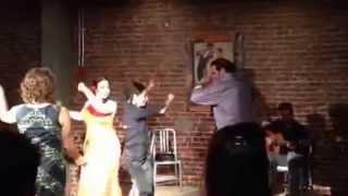 Flamenco ¡Feliz Cumpleaños!