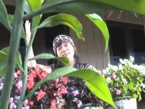Ka Au Nak Aw - A Kuk - Lai Hla Thar video