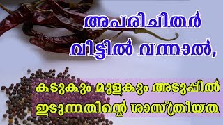 അപരിചിതര്  വന്നാല്, കടുകും മുളകും അടുപ്പില് ഇടുന്നതിന്റെ ശാസ്ത്രീയത /Malayalam Health Tips
