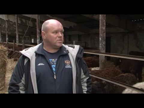 «Сельский порядок». Как стать фермером (14.01.2015)