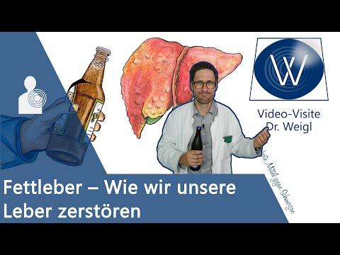 Fettleber & Leberschaden durch Alkohol, falsche Ernährung, Medikamente