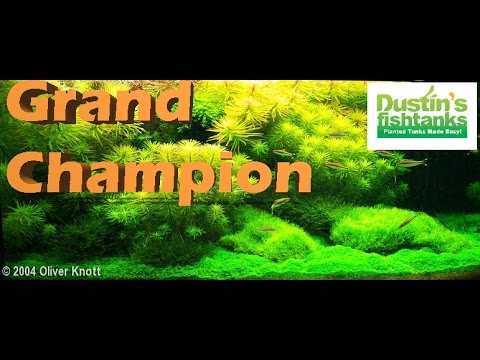 Aquascaping Legend- Oliver Knott Interview - YouTube