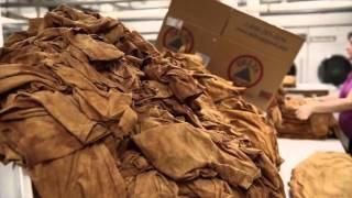 Видео о производстве футболок The Mountain 3D