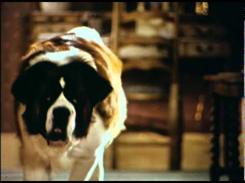 Beethoven's 2nd is listed (or ranked) 28 on the list The Greatest Dog Movies of All Time