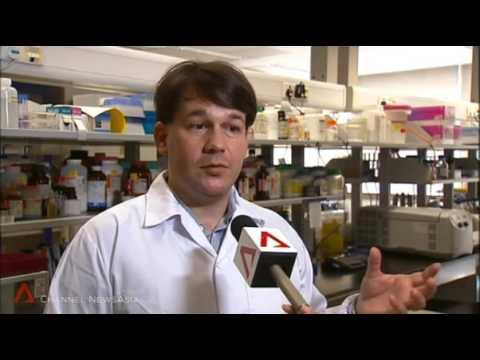 Channel News Asia Zika 2 Feb 2016