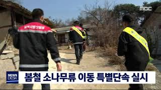 2019년 봄철 소나무류 이동단속 추진(토)