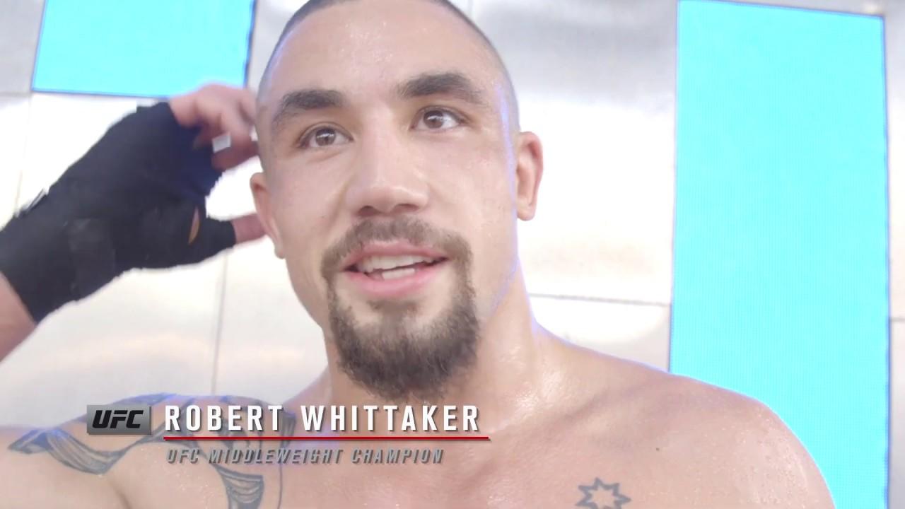 UFC 234: Обзор открытой тренировки