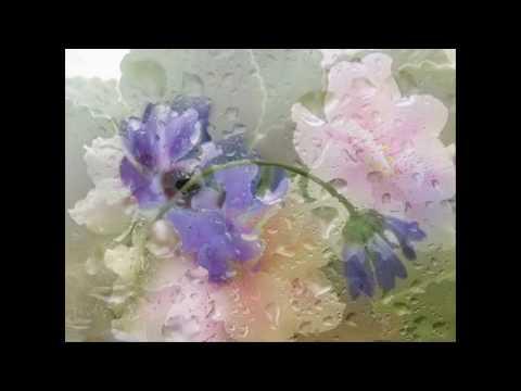 Валерий Агафонов - Цветы