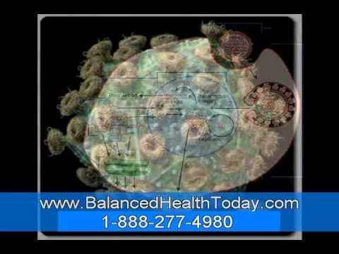 Antioxidant  Ellagic Acid Found In Berries, Other Foods Prevents UV Skin Damage Wrinkles Part 2