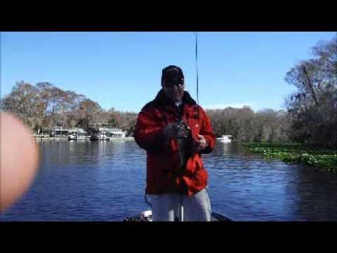 St Johns River update