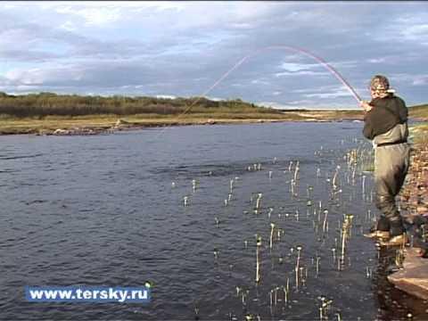 рыбалка на кольском полуострове нахлыстом