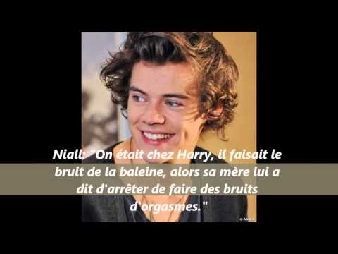 One Direction - French Facts //2013//