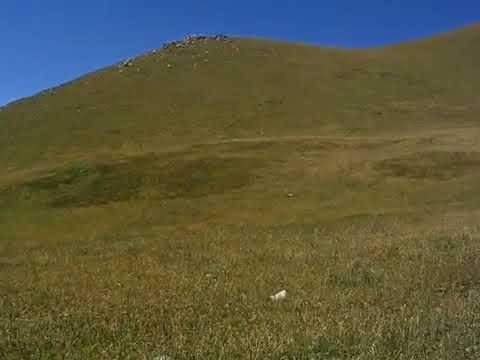 Alma-Arasan gorge