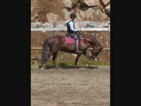 Jatilan Hevoset Ja Ponit video