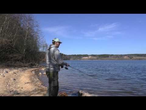 навашинский затон рыбалка