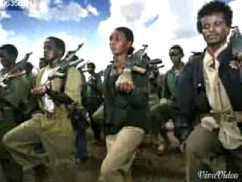 Kadir martu (Oromo2015)