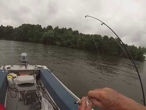 Lake Norman, Fishing For White Perch, 6-28-14, Part C
