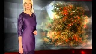 Прогноз погоды на субботу и воскресенье