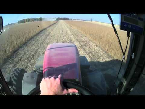 Running 305 Case IH Magnum & Kinze 1050 Grain Cart Soybeans 10-9-11