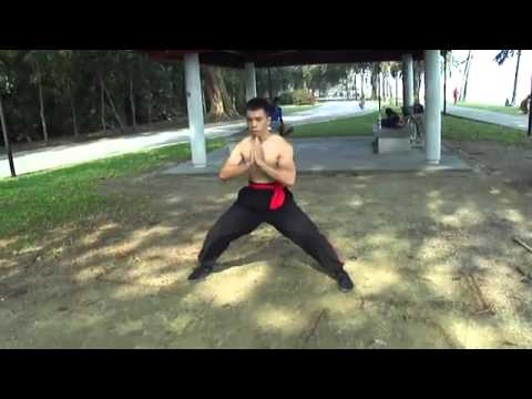 Taming the Tiger Fist of Hung Ga Gung Fu Image 1