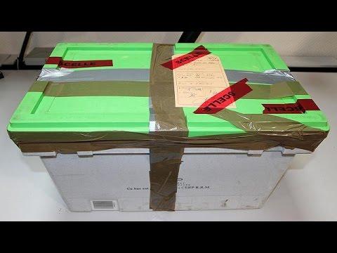 Germanwings: Investigadores trabalham para decifrar ficheiro áudio da primeira caixa negra