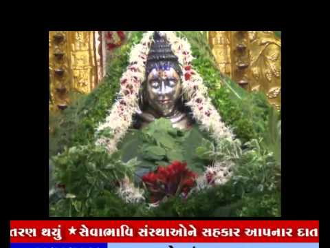 22-08-2014,ivn24news,gujarati news,somnath mahadev,ganpati,news