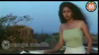 Back to Back Comedy Scenes || Chaitanya Telugu Movie