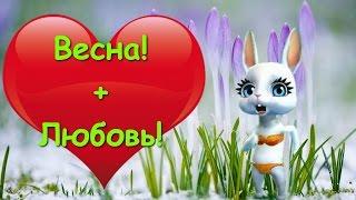 Zoobe Зайка Если в окно лучиком весна :-)