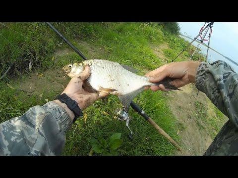 рыбалка на дону на фидер