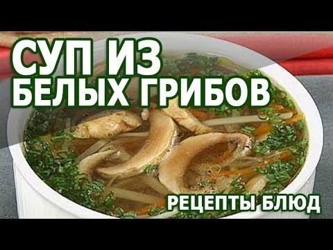 рецепт грибного супа из белых грибов видео